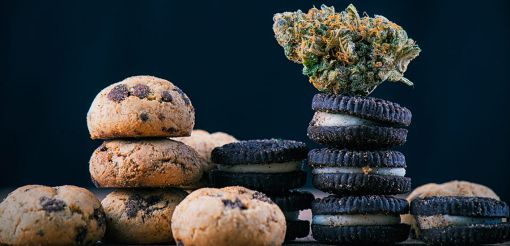 Photo for: Cannabis Food: What Does It Include and Why Is It Set to Explode?