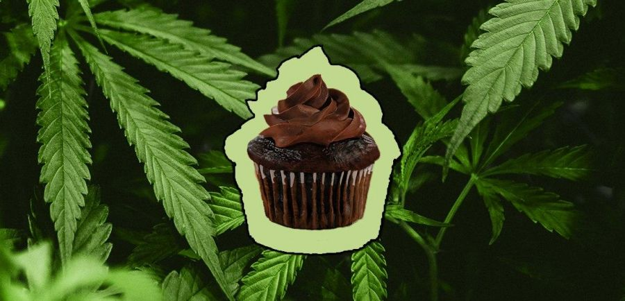 Photo for: How To Make Your Edibles Brand Stand Out In The Canna-verse