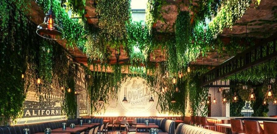 Photo for: Cannabis Cafes and Restaurants Are Popping Up All Over the USA