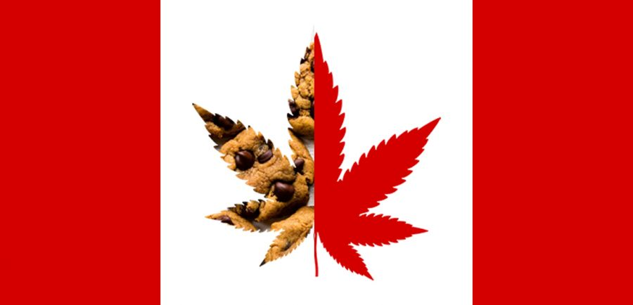 Photo for: Cannabis 2.0 The Next Wave of Legalization in Canada