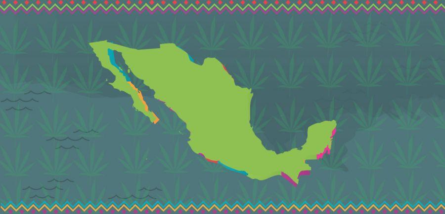 Photo for: Mexico Inches Towards Marijuana Legalization