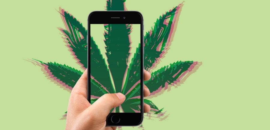Photo for: Top Cannabis Apps To Download Now