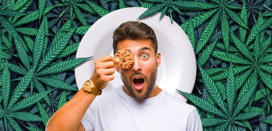 Photo for: Beverage Trade Network Launches Cannabis Food Show in Chicago and San Francisco